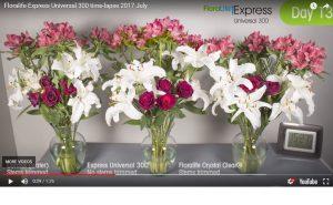 Floralife Express Universal 300 Time-Lapse