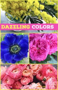 Floral Friday ~ Color Me Happy
