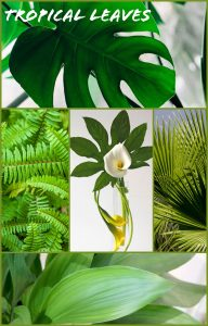 Floral Friday ~ Tropical Leaves