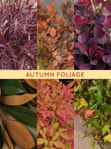 Floral Friday ~ Autumn Foliage
