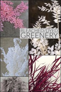 Floral Friday ~ Bleached/Dyed Greenery