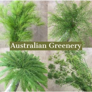 Floral Friday ~ Australian Greenery