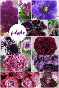 Floral Friday ~ Color PURPLE