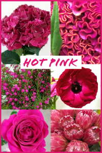 Floral Friday ~ Hot Pink