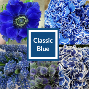 Floral Friday ~ Classic Blue - Pantone 2020 Color of the Year